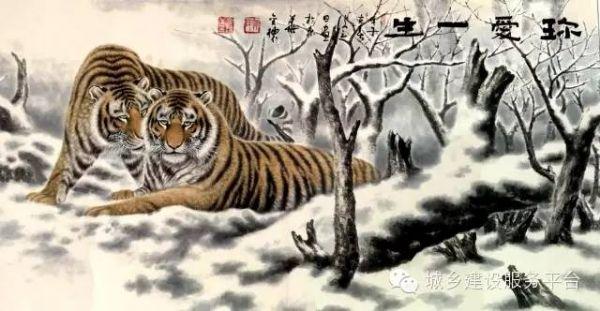 猎豹等大型猫科动物闻名海内外
